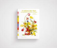 Il colore dei fiori composizioni