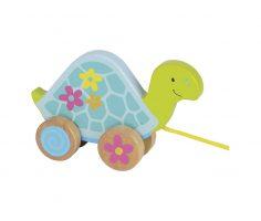 Trainabile tartaruga Goki