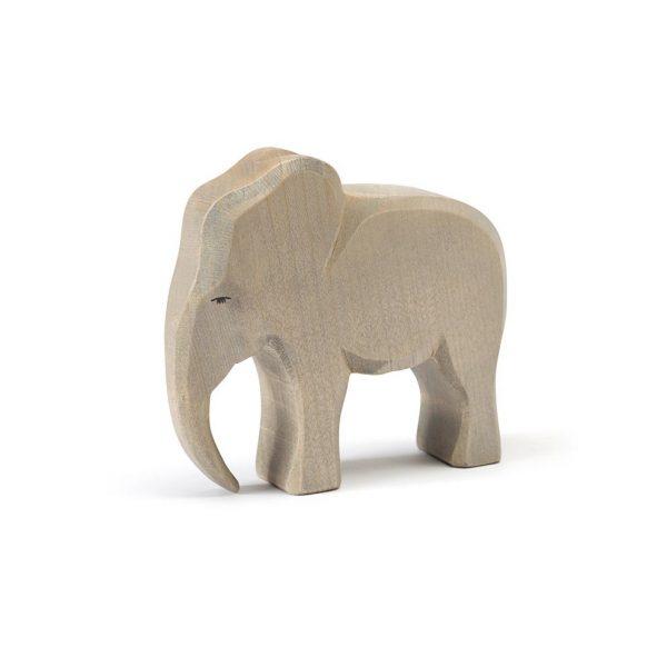 Elefante maschio Ostheimer 20420